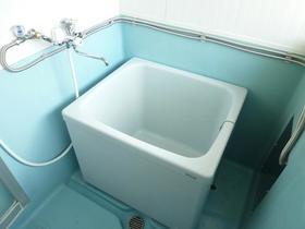 関水ハイツ 203号室の風呂