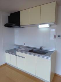 アネックス南町田 202号室のキッチン