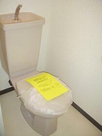 センチュリーハイツ町田12号棟 202号室のトイレ