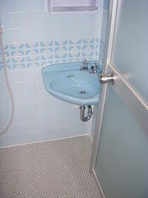 センチュリーハイツ町田12号棟 202号室の洗面所