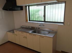 フラワーハイツ 101号室のキッチン
