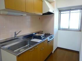 エクステリア宮島 403号室のキッチン
