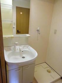 エクステリア宮島 403号室の洗面所