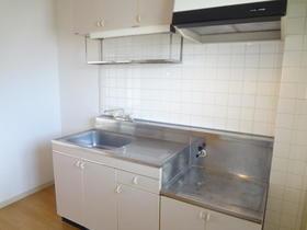 グリーンパーク井上 205号室のキッチン