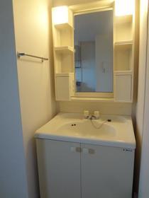 グリーンパーク井上 205号室の洗面所