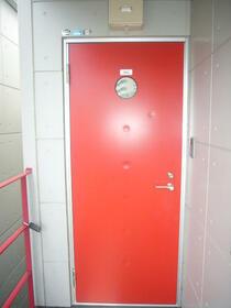 ラスティング相模大野 302号室の玄関