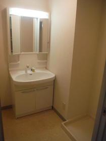 ベルアベニュー南林間 202号室の洗面所