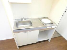 グランバリュー相模大野 203号室のキッチン
