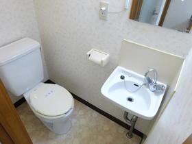 サンスフラット C号室のトイレ