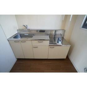 サザンウッドハイツ 301号室のキッチン