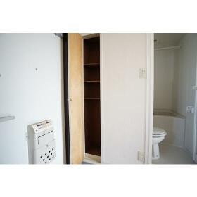 サザンウッドハイツ 301号室の玄関