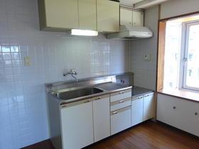 ハイムスワン 307号室のキッチン