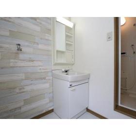 フェアリーハウス 201号室の洗面所