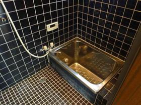 ハイツ石打 101号室の風呂