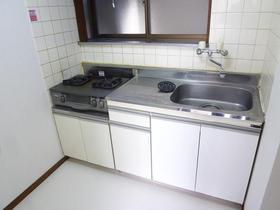 ハイツ石打 101号室のキッチン