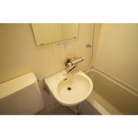 メゾン・ド・フィエール 208号室の洗面所