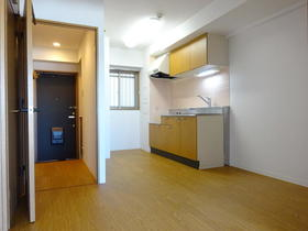 エクステリア宮島 502号室のキッチン