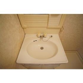 サンライズ南林間 202号室の洗面所