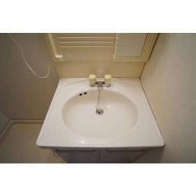サンライズ南林間 303号室の洗面所