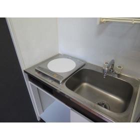ダイホープラザ大和 0313号室のキッチン