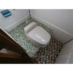 メゾンオータニ 5号室のトイレ