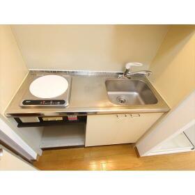 グリーンキャピタル大和 209号室のキッチン