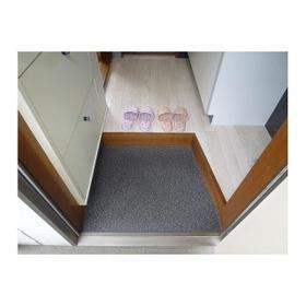 サンパレス21 202号室の玄関