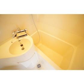 ノース ドゥ ファルコン 206号室の風呂