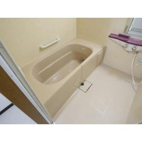 サンケイハイツ柳橋 203号室の風呂