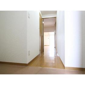 サンケイハイツ柳橋 203号室の玄関