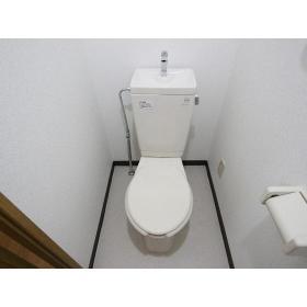 サンケイハイツ柳橋 203号室のトイレ