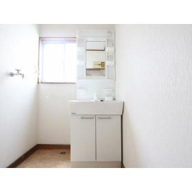 第2ビラヒロセ 101号室の洗面所
