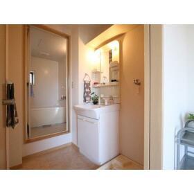ハイラーク桜ヶ丘Ⅷ 202号室の洗面所
