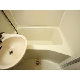 ホーユウコンフォルト大和中央 108号室の風呂