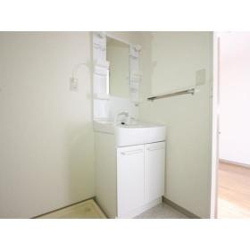 サンハイム桜ヶ丘 103号室の洗面所