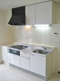 瀬谷レジデンス 502号室のキッチン