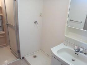 ブロード大和 204号室の洗面所