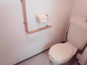 ブロード大和 204号室のトイレ