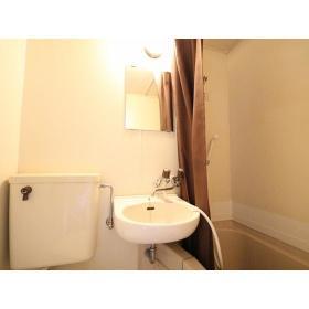 TOP桜ヶ丘第2 316号室の洗面所