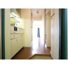 TOP桜ヶ丘第2 316号室の玄関