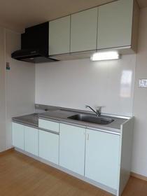 アネックス南町田 203号室のキッチン