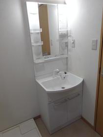アネックス南町田 203号室の洗面所