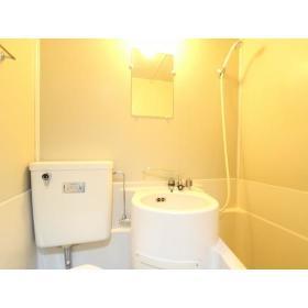 トップマンション桜ヶ丘第3 202号室の洗面所