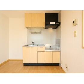 ハイラーク桜ヶ丘XI 201号室のキッチン