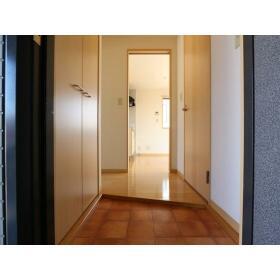 ハイラーク桜ヶ丘XI 201号室の玄関