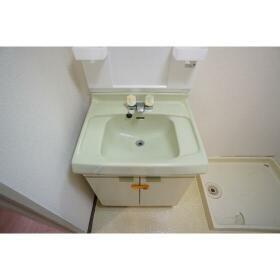 アルスチトセ 302号室の洗面所