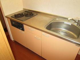 サン・セレーノ 305号室のキッチン