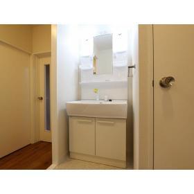 ガーデンクリア柳橋 203号室の洗面所