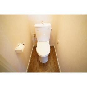 メゾン南林間6 206号室のトイレ