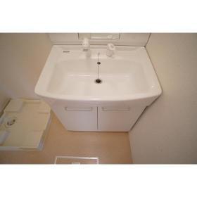 アストリット 201号室の洗面所
